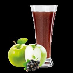 Ovocňák -Mošt 100% jablko+černý rybíz 200 ml