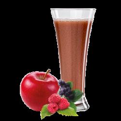 Ovocňák - Mošt 100% jablko+lesní ovoce  250 ml