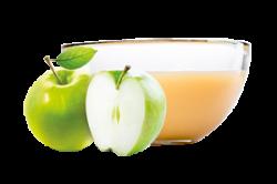 Ovocňák - Pyré jablko 120 ml čistě přírodní produkty z ovoce a zeleniny, bez konzervantů, sladidel, barviv, jen 100% ovoce