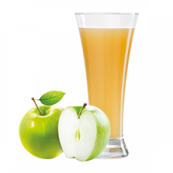 Ovocňák - Mošt 100% jablko 200 ml