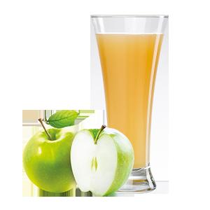 Ovocňák -Mošt 100% jablko 200ml TOKO AGRI a.s.