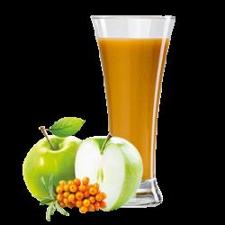 Ovocňák  - Mošt 100%  jablko+rakytník 250 ml