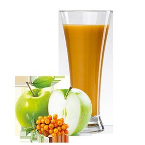 Mošt 100% jablko+rakytník 250 ml TOKO AGRI a.s.