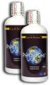 PhytoChi™ 8x500ml - bylinný přípravek podle tradiční čínské medicíny Earth Power