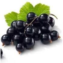 Ovocný džem od Sedmikrásky - Černý rybíz 520 ml