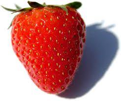 Ovocný džem od Sedmikrásky - Jahoda jednodruhové ovoce, bez přídavků jablek apod., poměr ovoce : cukr - 2:1, s přídavkem vitamínu C. 520 ml Rodinná farma Sedmikráska